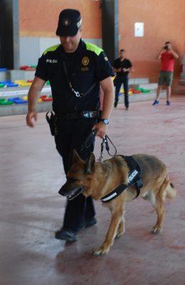 La Bustia- Policia - haixix