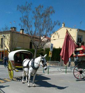 Els Tres Tombs de Collbato 2019. Foto: La Bustia.