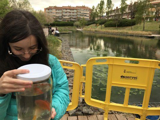 La Bustia peixos donats Llac Olesa