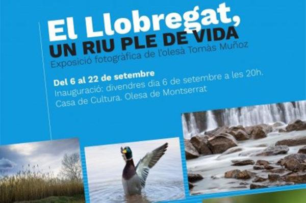 Olesa - La Bustia - Exposició riu llobregat