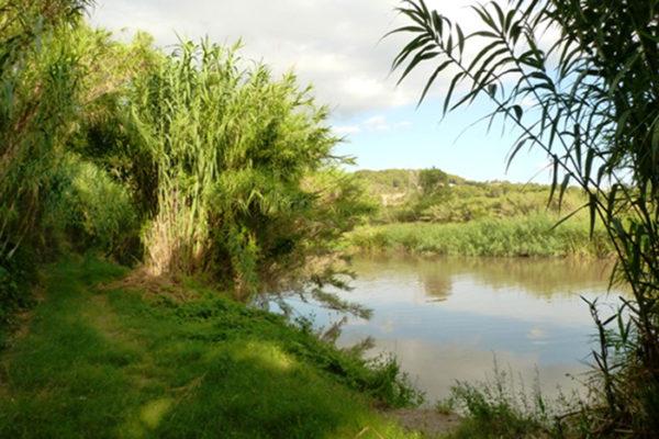 Olesa - La Bustia - riu Llobregat