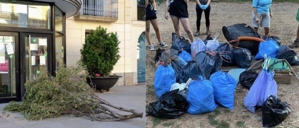 La Bustia olivera talada Cal Candi i brosa riu Olesa