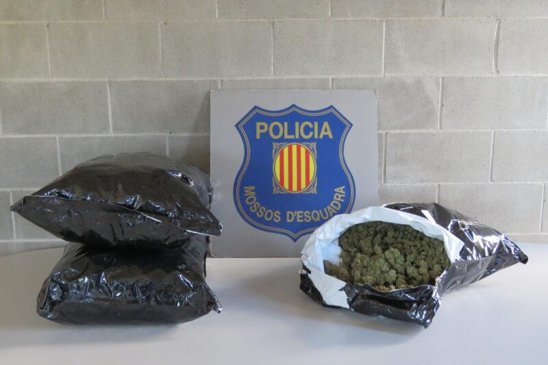 La Bustia cabdells marihuana Mossos Martorell
