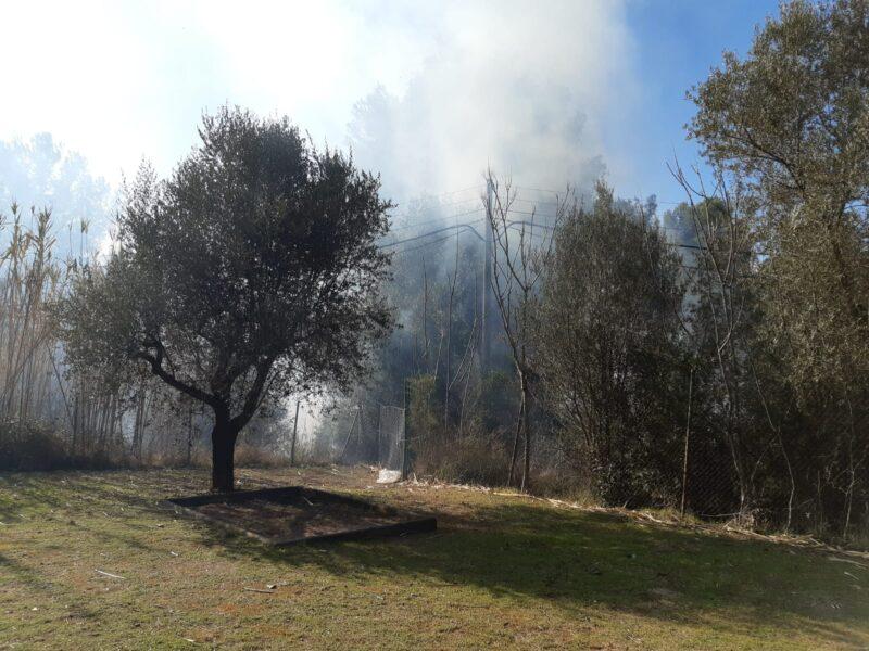 La Bustia incendi Castellvi (2)