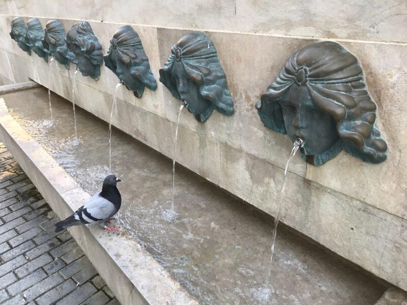 La Bustia aigua placa de les Fonts Olesa