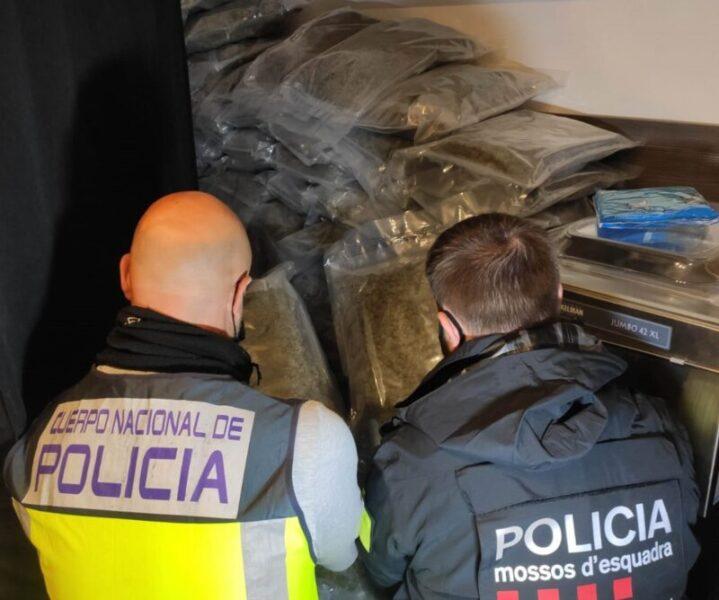 La Bustia marihuana Sant Andreu