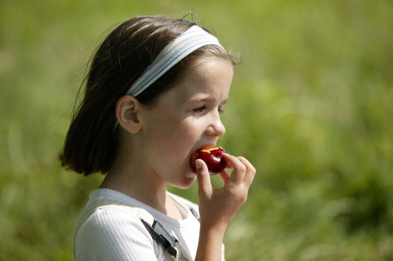 La Bustia Infancia Saludable foto quickimage