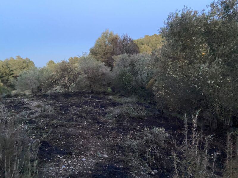 La Bustia incendi Masquefa (1)