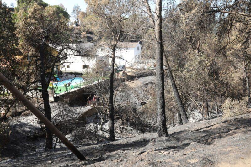 La Bustia diputats alcaldes regidors visita 17 juliol incendi Castellvi Martorell 5