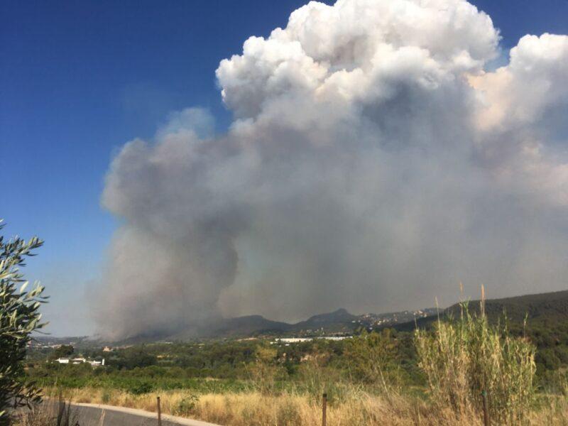 La Bustia incendi Martorell 13 juliol 2021 5