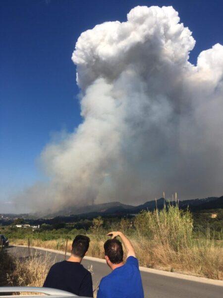 La Bustia incendi Martorell 13 juliol 2021 8