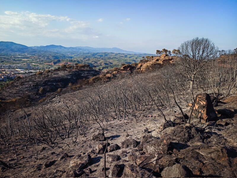 La Bustia despres incendi Castellvi i Martorell 2021 Visual Media 3