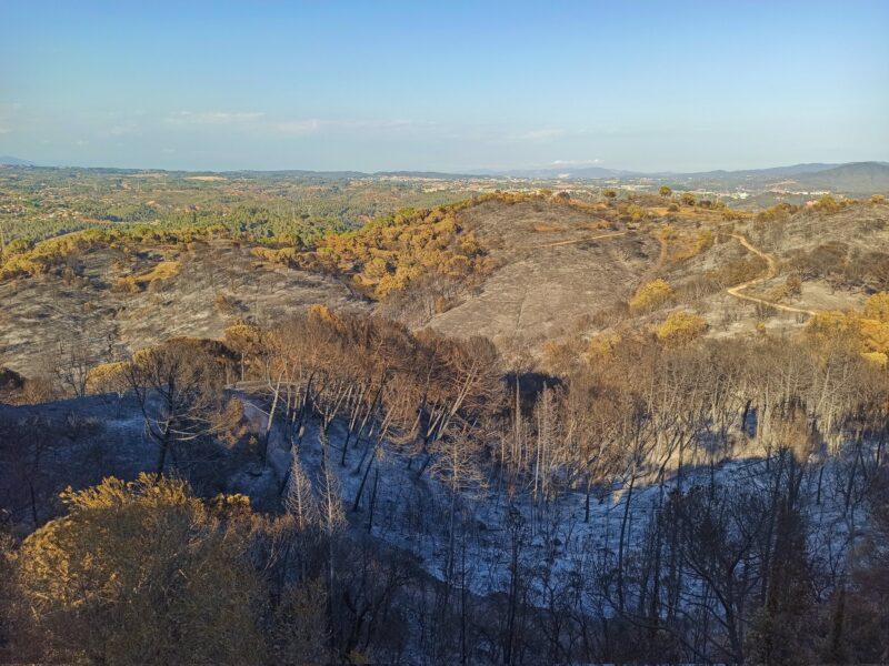 La Bustia despres incendi Castellvi i Martorell 2021 Visual Media 4