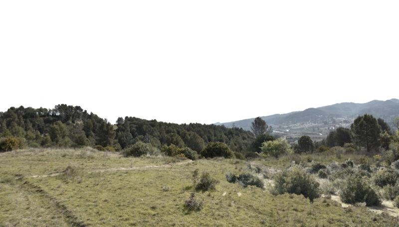 La Bustia 3 placa 1 projecte Agroparc Penedes Gelida