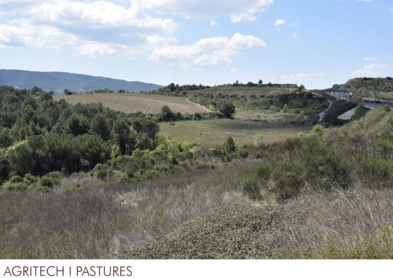 La Bustia 7 pastures 1 projecte Agroparc Penedes Gelida