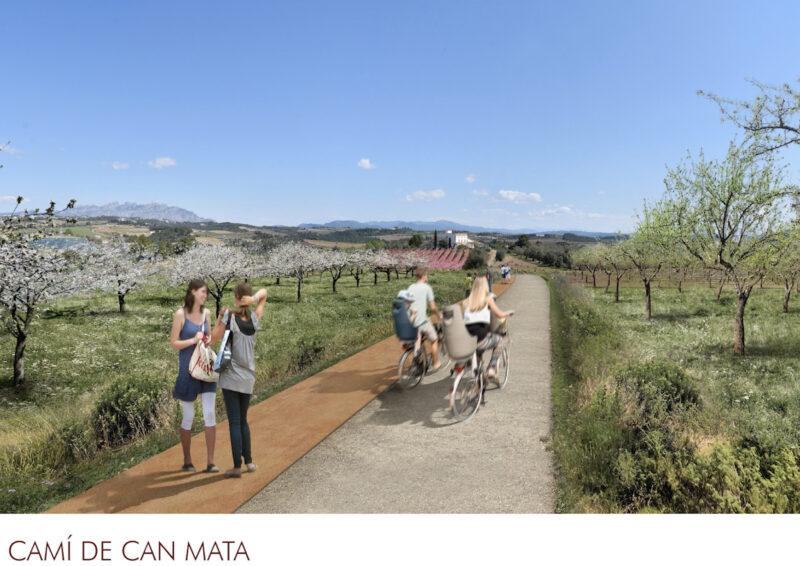 La Bustia 8 can mata 2 projecte Agroparc Penedes Gelida