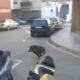La Bustia porc senglar carrers Olesa